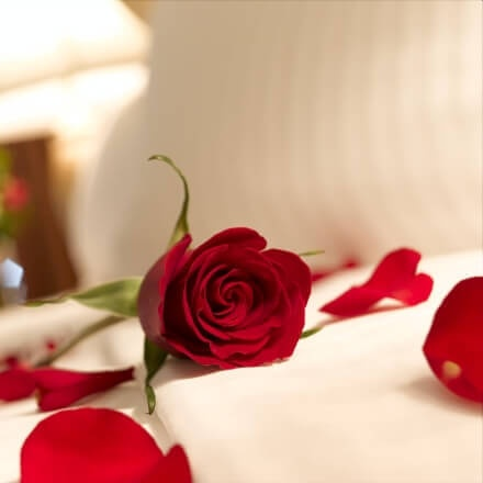 Stay minimum 2 nights, get special package for honeymoon couples, FRUIT + WINE - ROOM UPGRADE VIP treats<br />